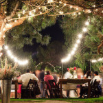 Top Wedding Venues In Joburg