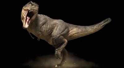 The Dino Exhibition