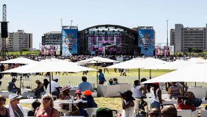 Top Music Festivals In Joburg