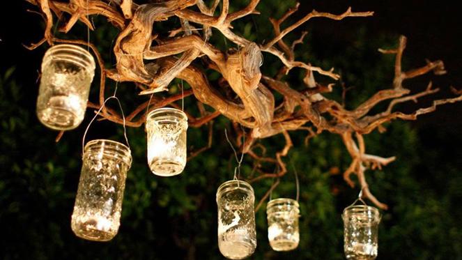 Walter Sisulu National Botanical Garden Night Run