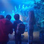 The Dino Expo At Nasrec