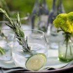 The Gin Foraging Festival