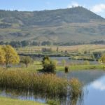 Experience & Explore The Dullstroom Countryside