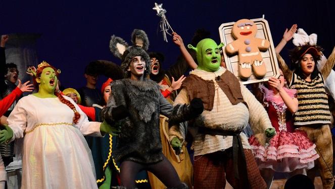 Shrek The Musical JR.