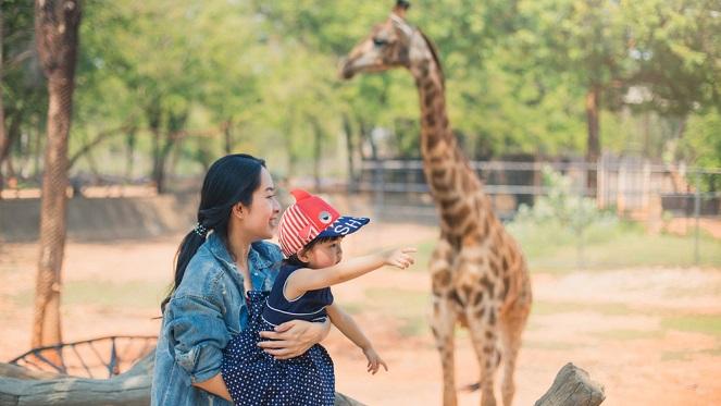 Mothers day concert joburg zoo