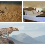 Glamping Glamour: Affordable Vs Upmarket Glamping