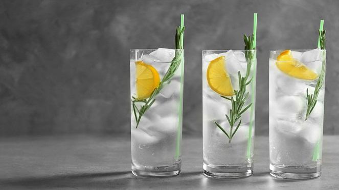 Gin Connoisseur Tasting