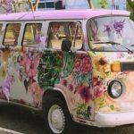 Vegan Hippie Connection Market Visits The Magalies...